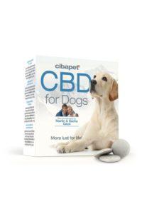 cbd pour chiens