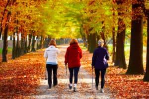 marche modérée pour arthrose, en combinaison avec le CBD