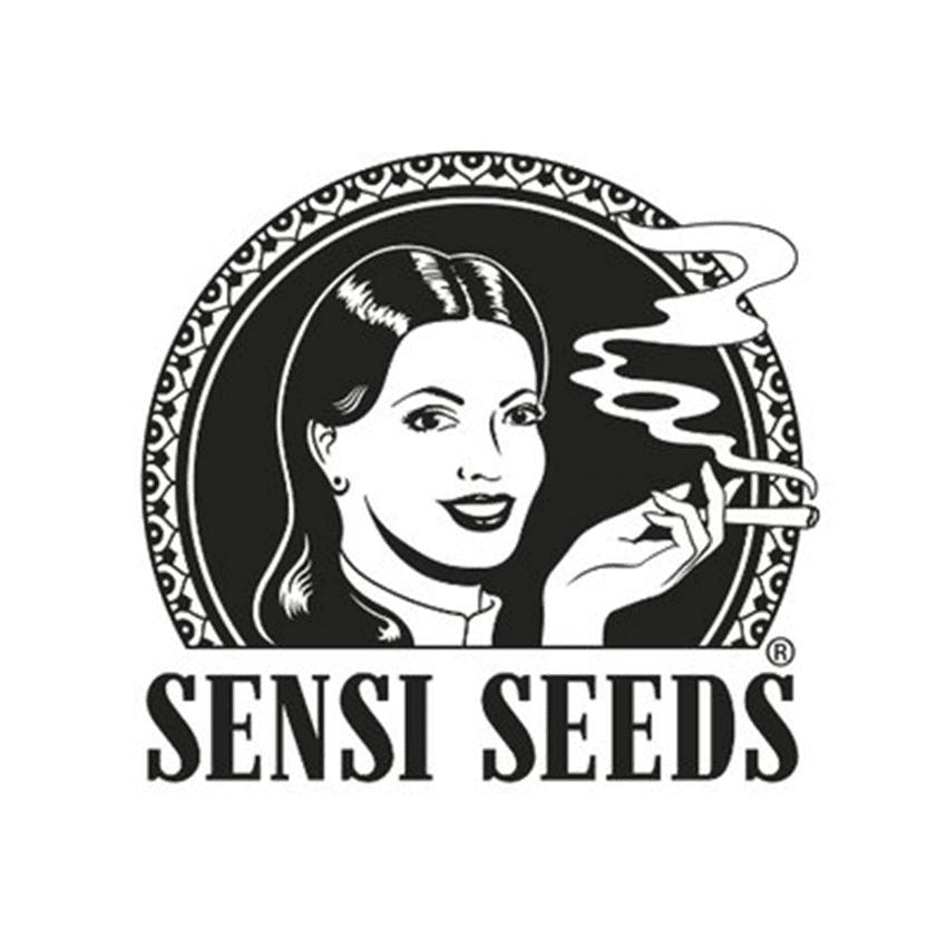 logo sensi seed graines