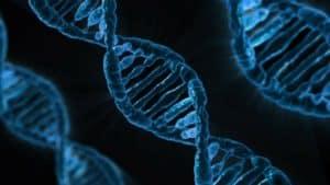 probleme genetique epilepsie