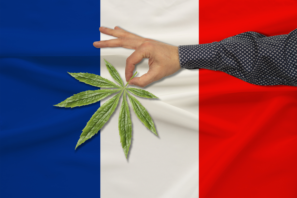 cannabis en france